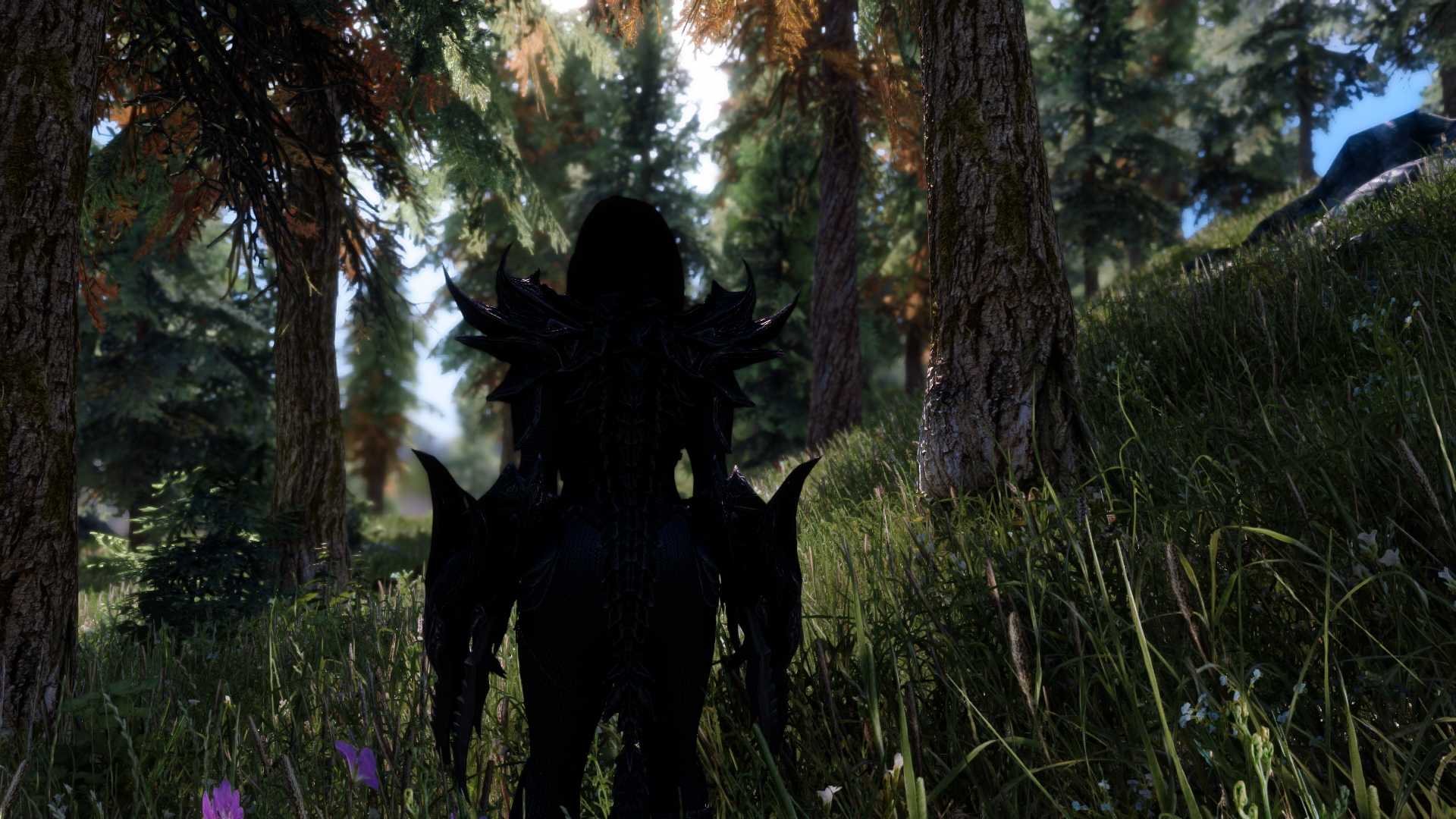 Skyrim SE Beautification Project